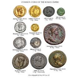 A beginners' guide to Roman coins
